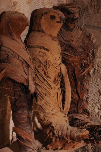 Múmia de falcão em Tuna el-Gebel . Imagem disponível em . Acesso em 13 de junho de 2013.