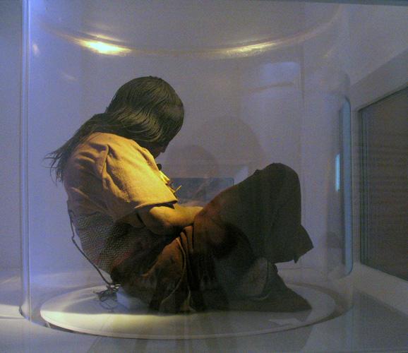 A Donzela sendo exibida em um contêiner de acrílico, mantido a baixa temperatura.