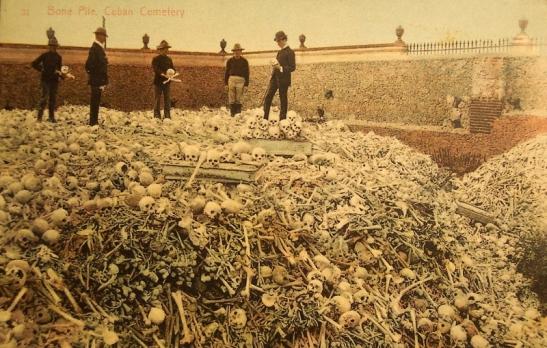 vintage-bones-postcard (800x509)