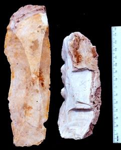 Macrolâminas arcaicas de Belize. Imagem: cortesia do Projeto Colha.