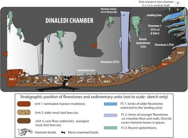 Dinaledi_Chamber_illustration