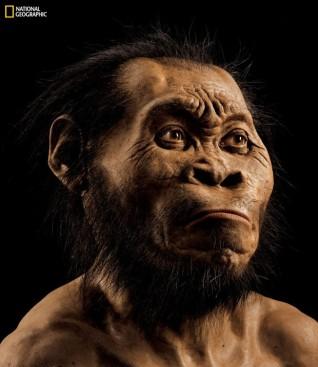 human-ancestor_fran-1