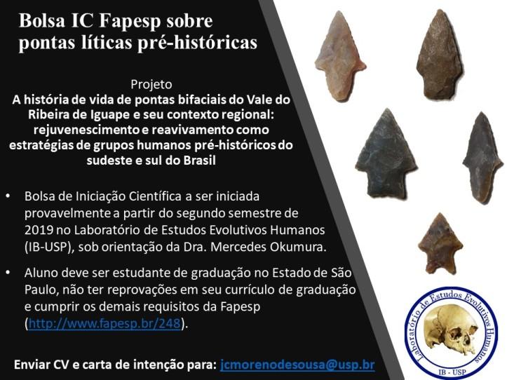 Bolsa IC Fapesp sobre pontas líticas pré-históricas